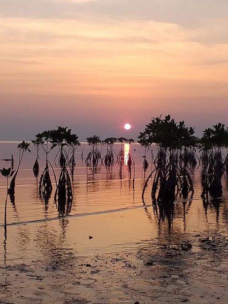 national park phangan samui