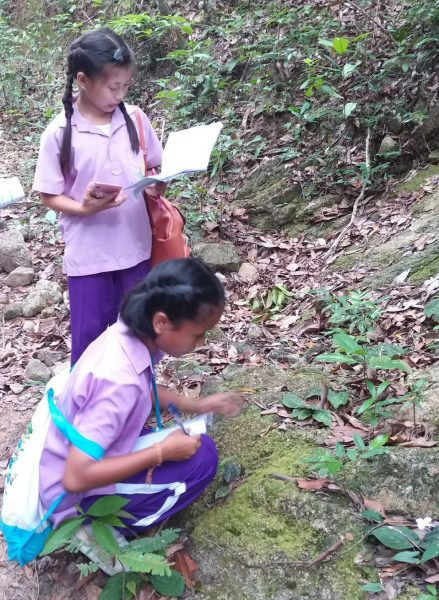 environmental guardianship