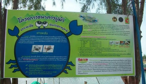 ecothailand crab bank