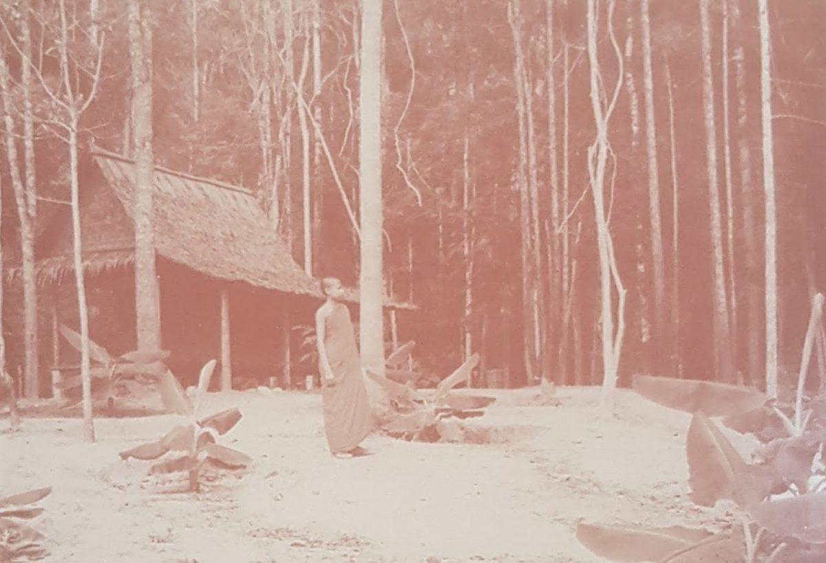 nam tok phaeng forest park